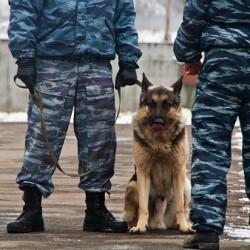 В Тобольске усилены меры антитеррористической безопасности