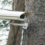 За пожарами в тобольских лесах проследят камеры видеонаблюдения