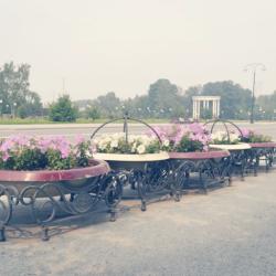 Дым от пожаров не повлиял на качество воздуха в Тобольске