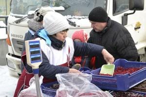 Тоболяки смогут купить на ярмарке продукцию местных садоводов