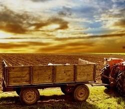 Обработку тюменской пшеницы теперь контролируют SIM-карты