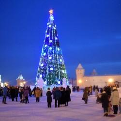 Главная елка Тобольска станет выше на четыре метра