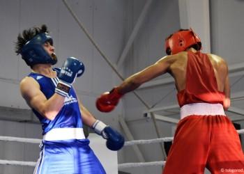 Турнир по боксу памяти Вячеслава Старчука в Тобольске. Фото