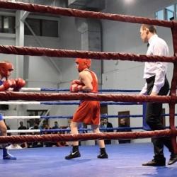 Тоболяков ждут на соревнованиях по боксу, плаванию и фигурному катанию
