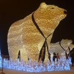 Тобольских медведей отправят в берлогу после предстоящих выходных
