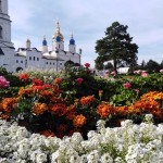 В Тобольске на озеленение города потратят 43 миллиона рублей