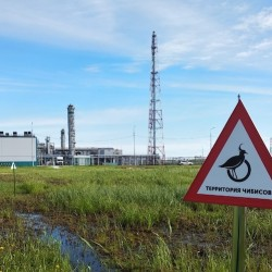 Игорь Климов: СИБУР в своей работе соблюдает все экологические нормативы