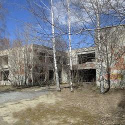 В Тобольске в здании бывшего инфекционного отделения может открыться Макдональдс