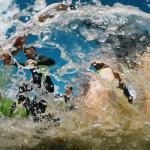 В Тобольске разрешен экстремальный забег «Стальной характер»