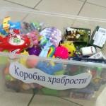 """Тоболяки могут оставить игрушки для нуждающихся детей в """"Коробке храбрости"""""""