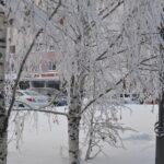 Поликлиника Тобольска будет работать в праздничные дни