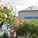 Тоболяков приглашают принять участие в конкурсе на цветочное оформлении города